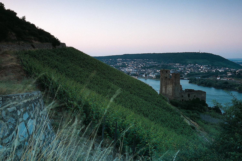 Rheingau2